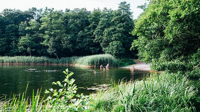Großer Lienewitzsee