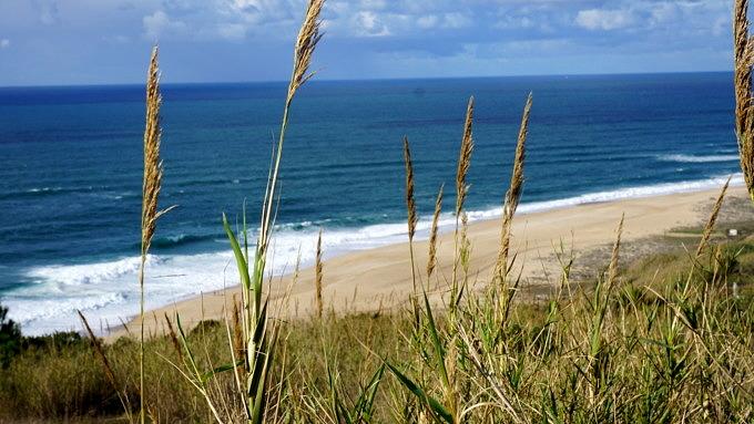 Praia da Amoreira, Surfen Portugal