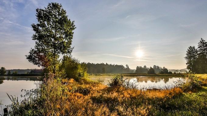 Morgenstimmung in der Teichlandschaft_Goldsteig_Deutschland_Wanderwege