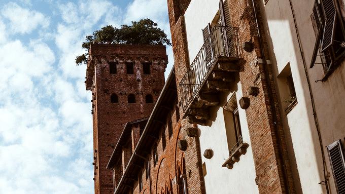Torre Guinigi_Lucca_Toskana_Italien