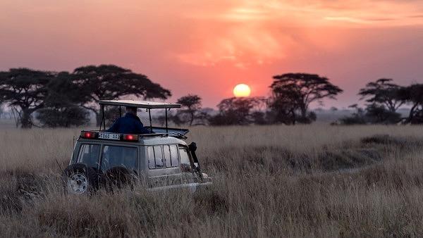 Mit Erik Lorenz und Lydia Möcklinghoff kannst du die Welt mit anderen Ohren hören_Jaguar im Pantanal_Geo Podcast_Audible