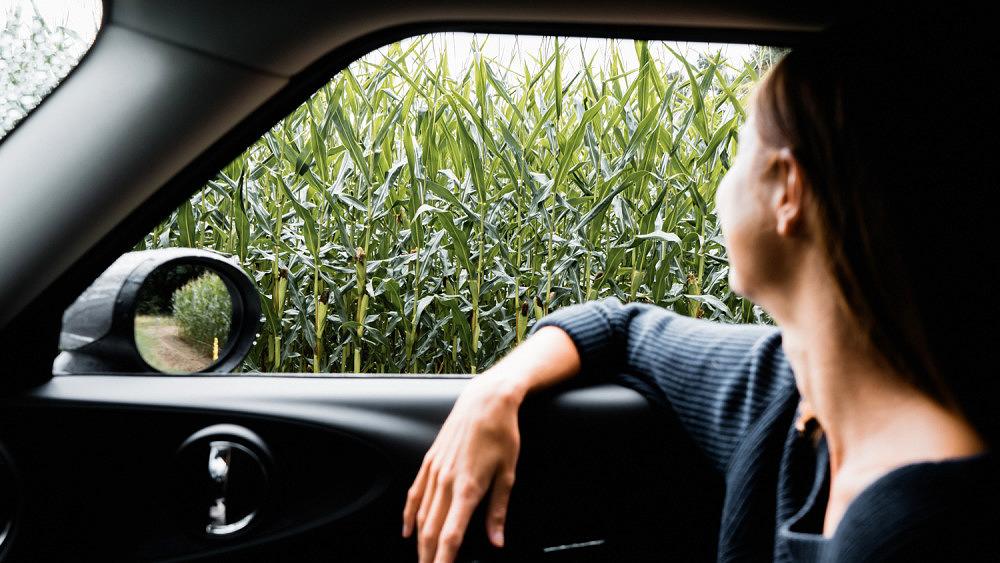 Autofahrten in den Urlaub, MINI, Urlaub, Autofahren