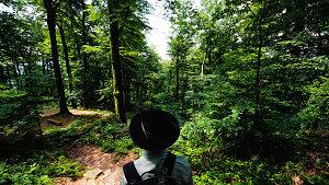nachhaltiger Urlaub Saarland
