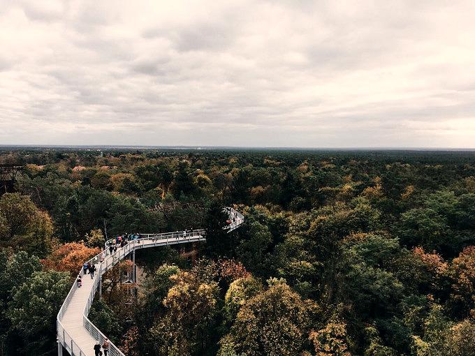Beelitz Heilstätten, Baumwipfelpfad, Mikroabenteuer Herbst