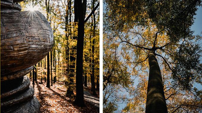 besondere Museen in europa_ Skulpturenpark Waldfrieden