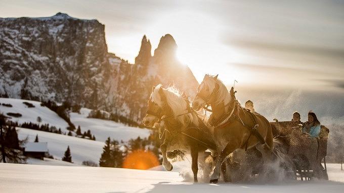 Pferdeschlittenfahrt_Südtirol
