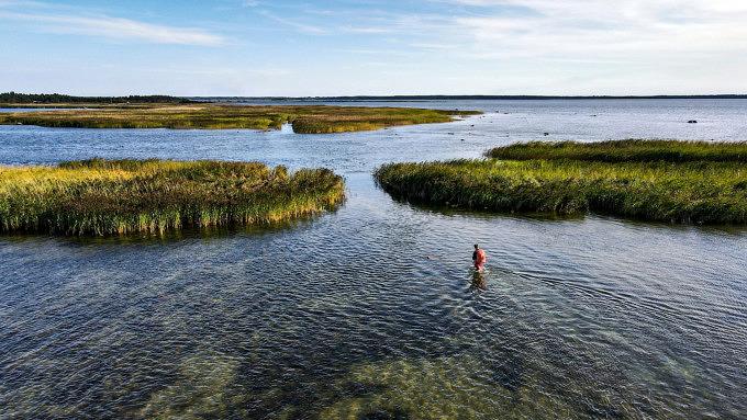 Estland_Zu Fuß durch die Ostsee