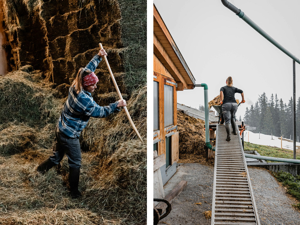 Volunteering Schweiz, Bergeinsatz Caritas, Mürren, Bauernhof