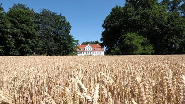 Schlösser Mecklenburg-Vorpommern