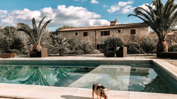Villa Vegana_Mallorca