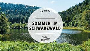 Sommer Schwarzwald