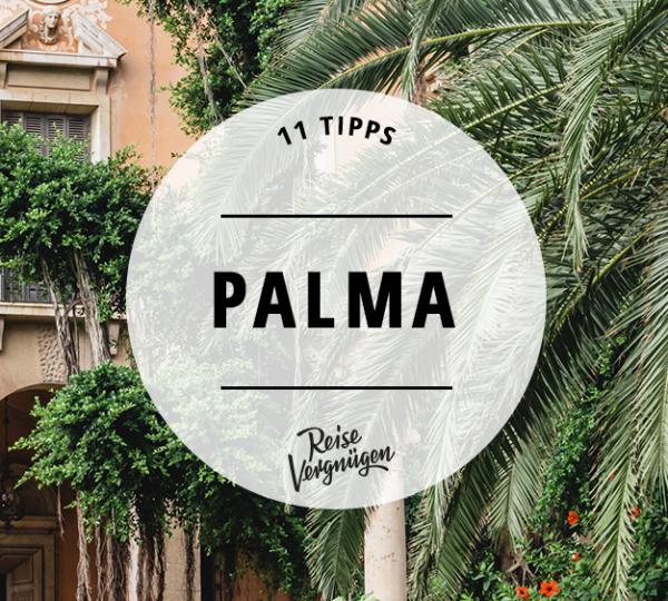 palma guide, reisevergnügen
