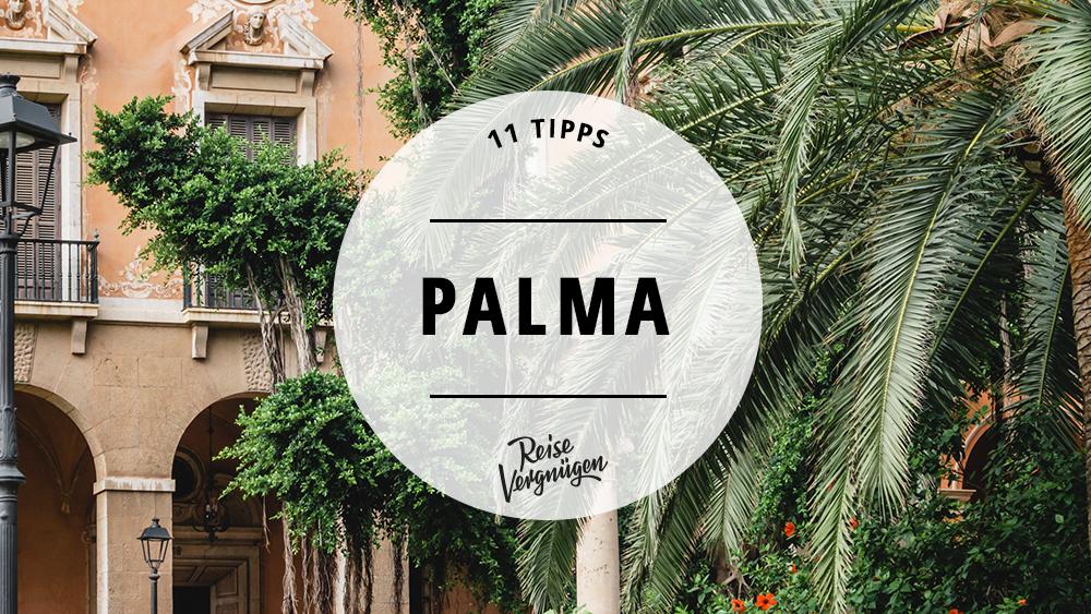 Palma – 11 Tipps für die mallorquinische Inselhauptstadt